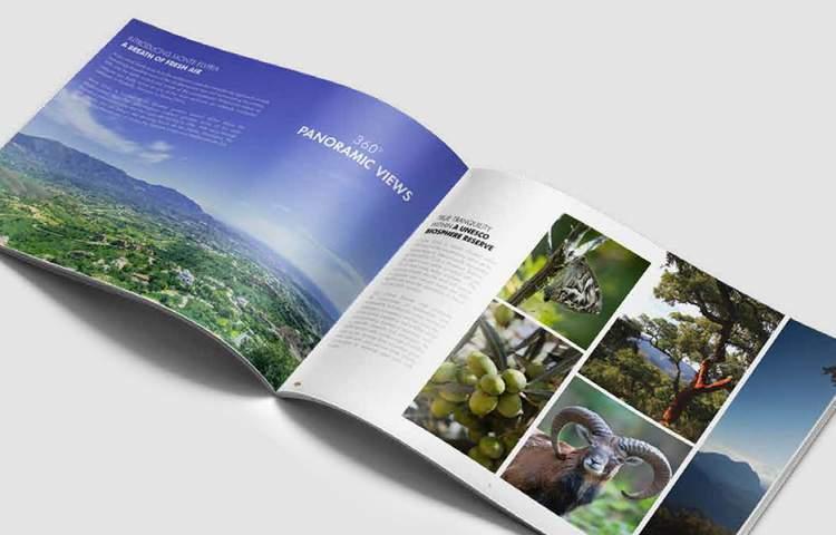 Siesta_Homes_Brochure_Redline_Company
