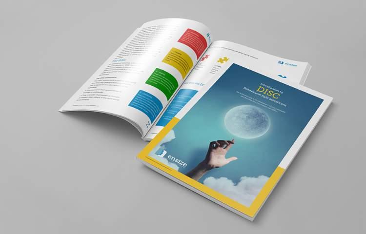 Ensize_Brochure_Redline_Company